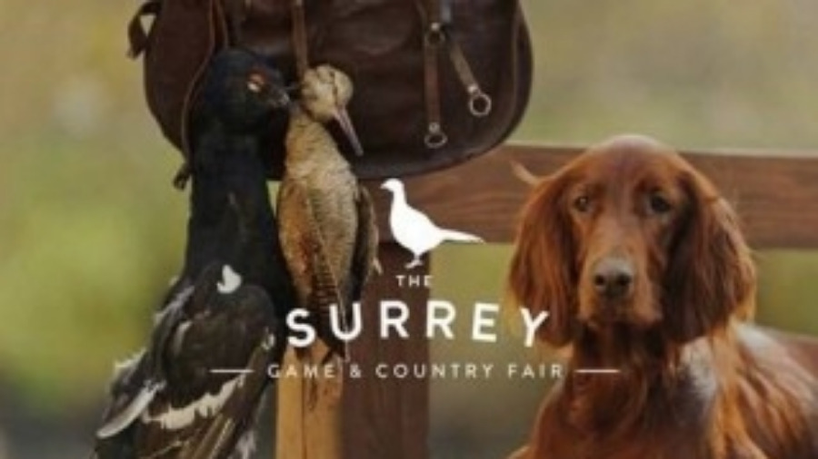 Surrey Game & Country Fair - Loseley House 25 September 2016